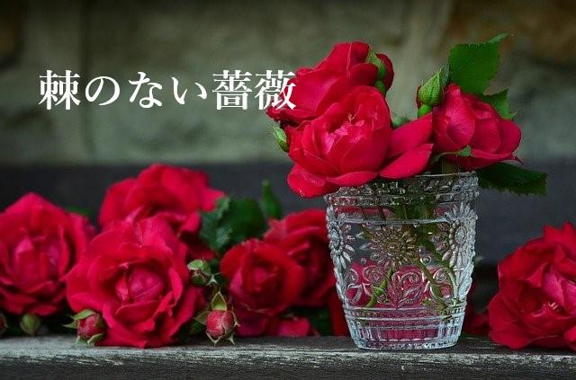 棘のない薔薇の表紙