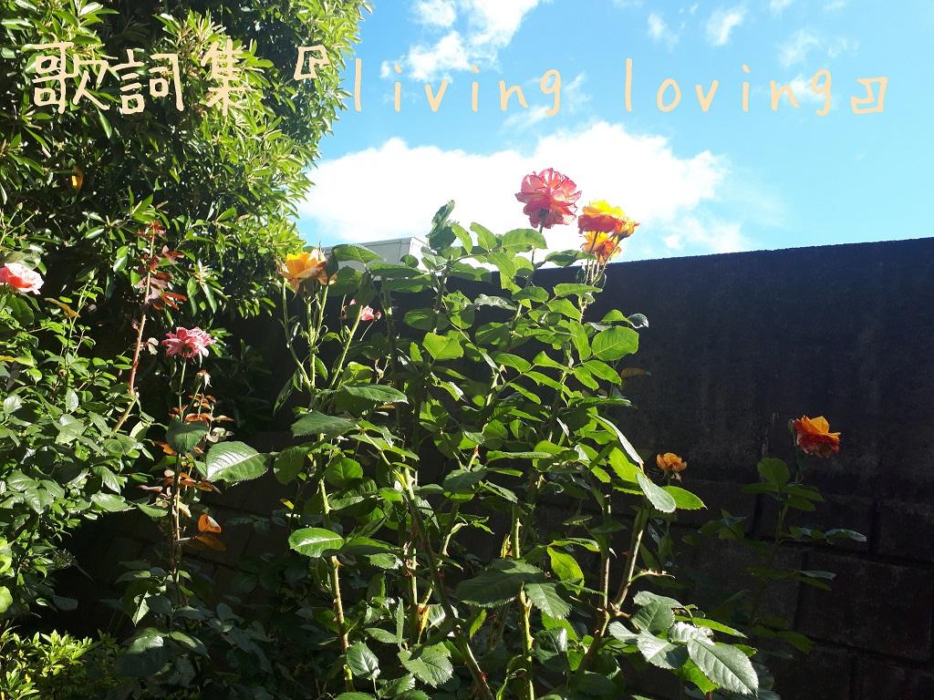 歌詞集『living loving』の表紙