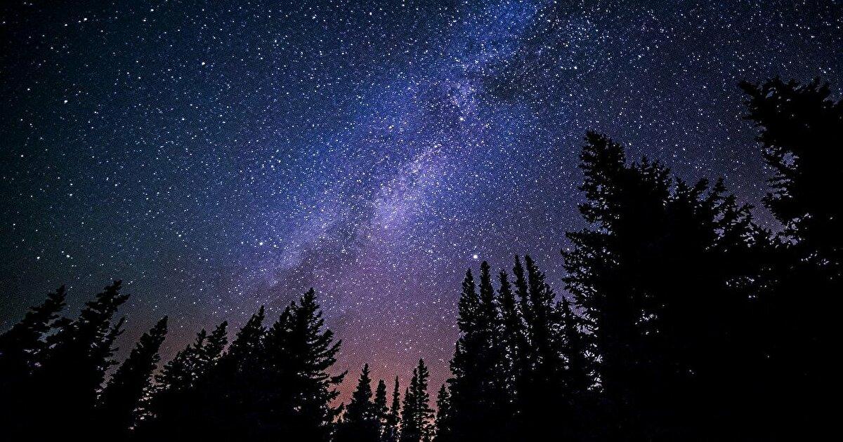 消えゆく世界で星空を見るの表紙