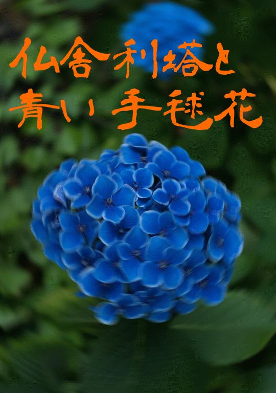 仏舎利塔と青い手毬花の表紙