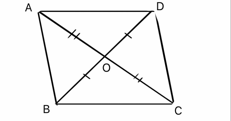 『四角形』の挿絵7