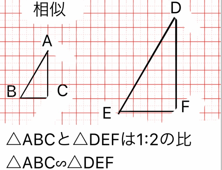 『相似(そうじ)』の挿絵1
